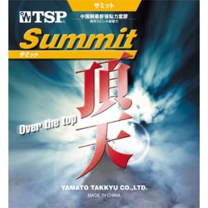 TSP Summit