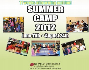 India Community Center 2012 Summer Camp Brochure